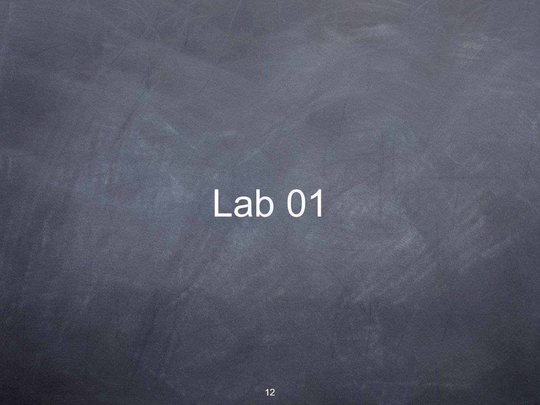 12 Lab 01