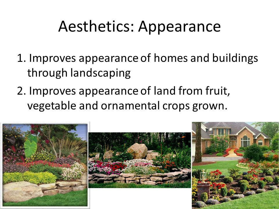 Aesthetics: Appearance 1. Improves appearance of homes and buildings through landscaping 2. Improves appearance of land from fruit, vegetable and orna