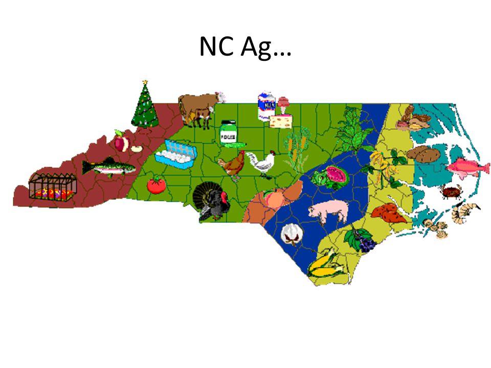 NC Ag…