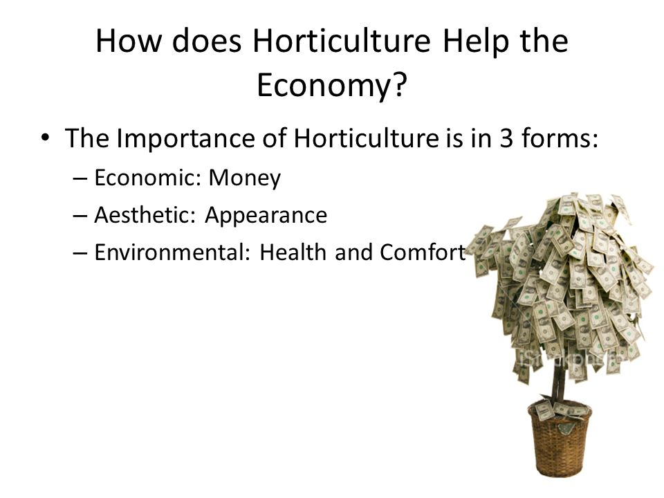 How does Horticulture Help the Economy.