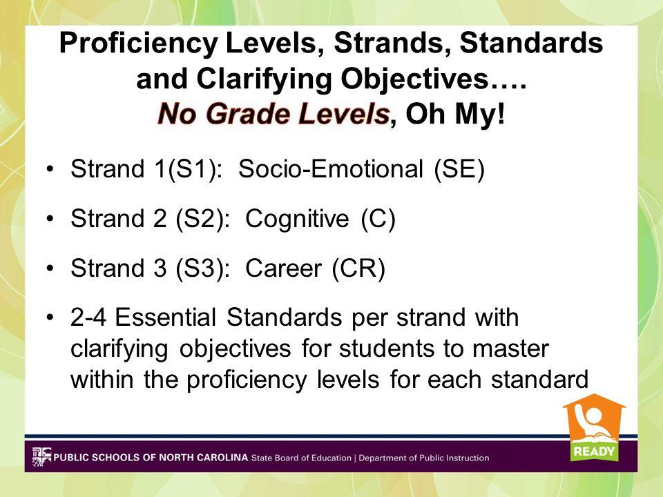 Strand 1(S1): Socio-Emotional (SE) Strand 2 (S2): Cognitive (C) Strand 3 (S3): Career (CR) 2-4 Essential Standards per strand with clarifying objectiv