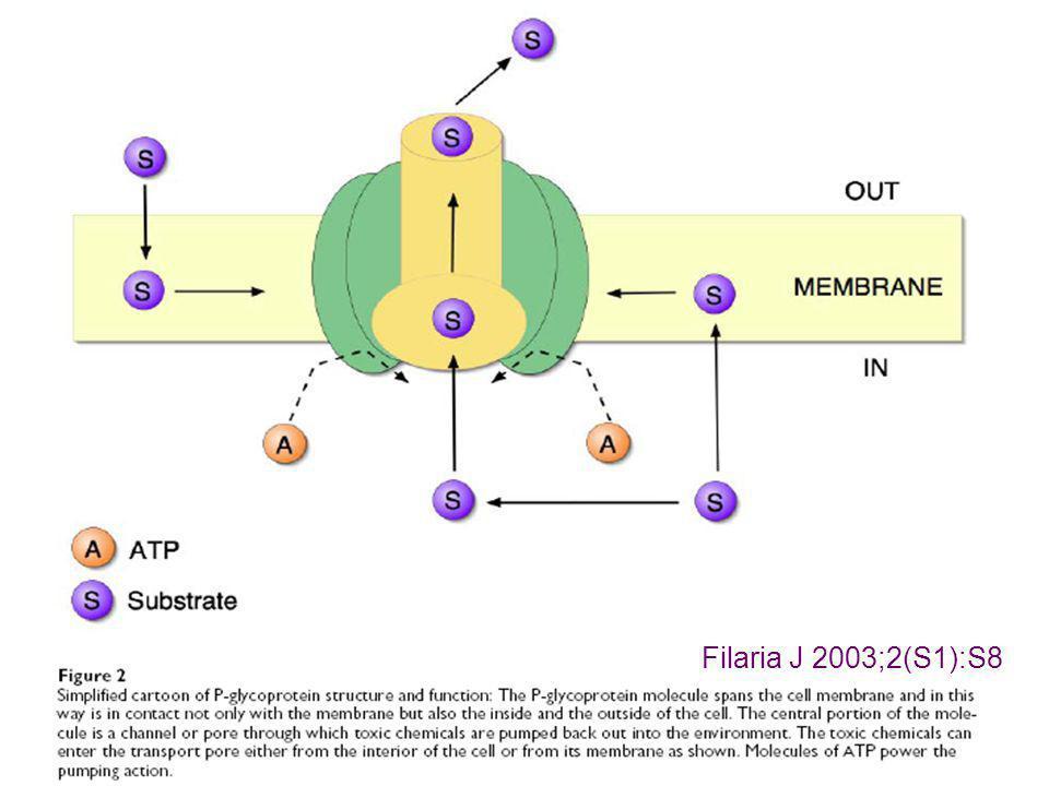 Filaria J 2003;2(S1):S8