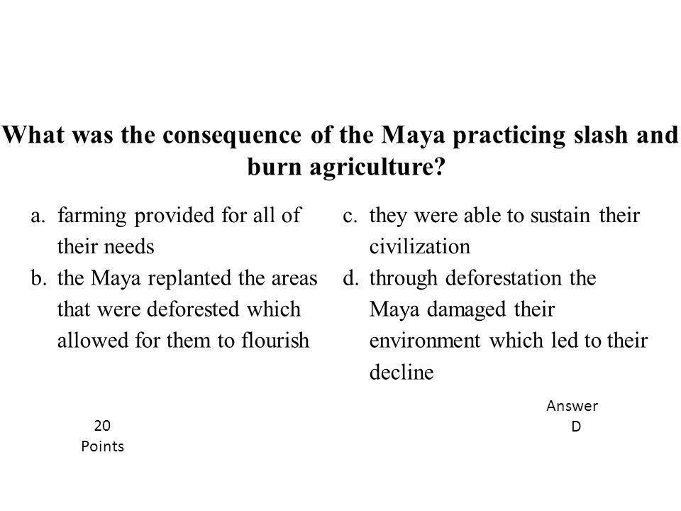 a. farming provided for all of their needs c. they were able to sustain their civilization b.the Maya replanted the areas that were deforested which a