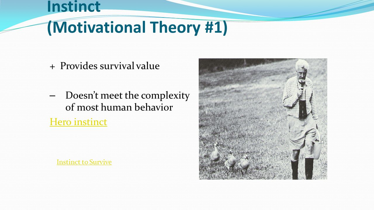 Drive Reduction Theory (Motivational Theory # 2) Drive Reduction Theory: idea that physiological (biological) needs create drives which motivates an organism to satisfy the need.
