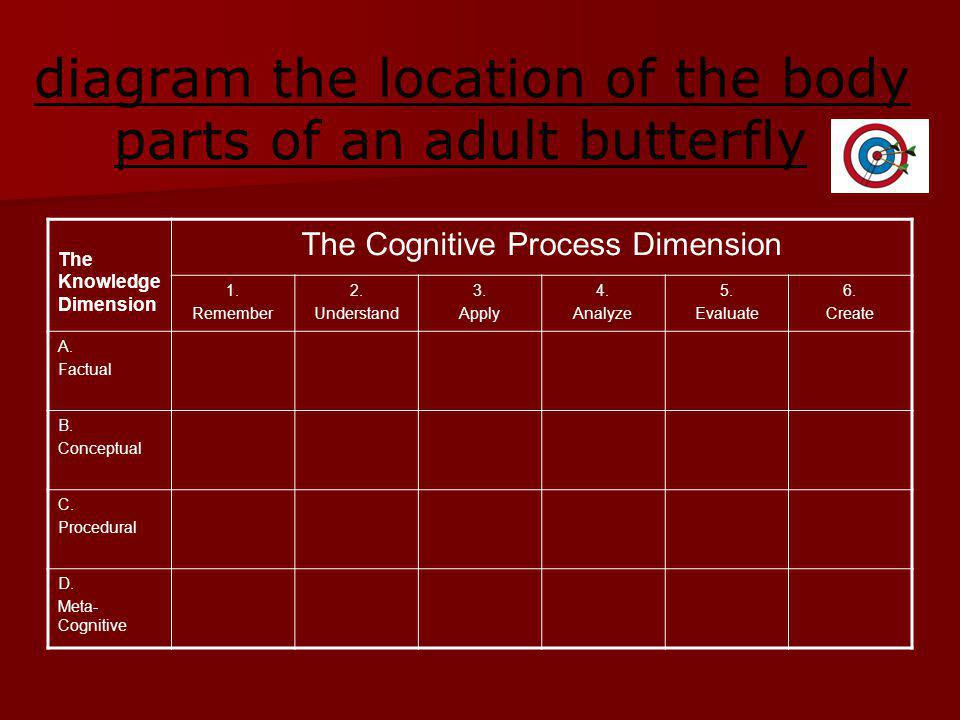 diagram the location of the body parts of an adult butterfly The Knowledge Dimension The Cognitive Process Dimension 1.