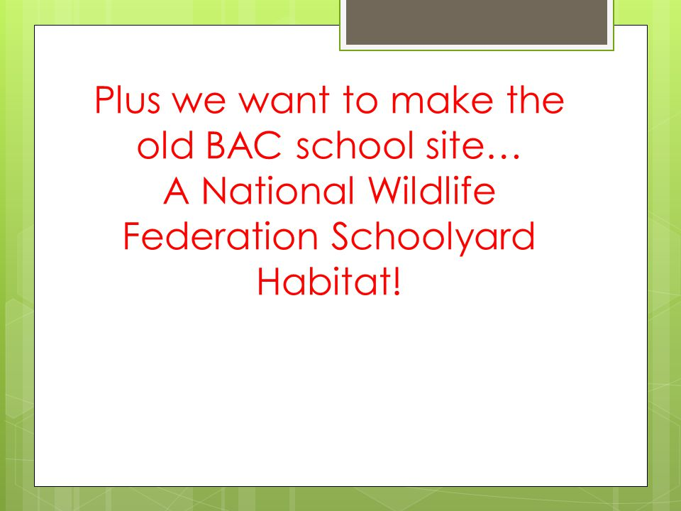 Plus we want to make the old BAC school site… A National Wildlife Federation Schoolyard Habitat!