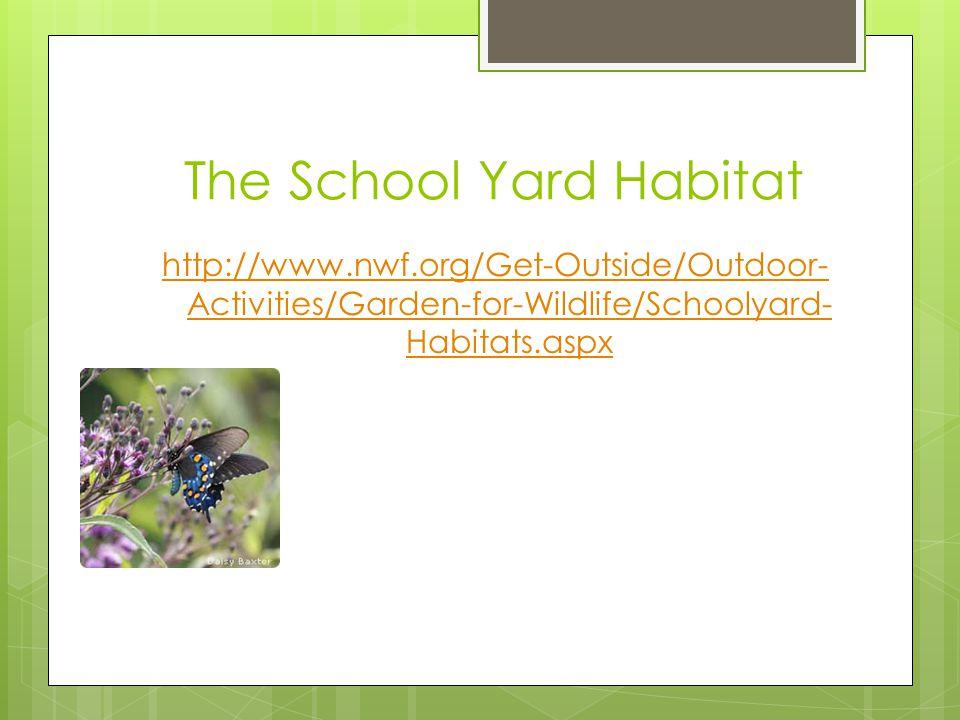 The School Yard Habitat http://www.nwf.org/Get-Outside/Outdoor- Activities/Garden-for-Wildlife/Schoolyard- Habitats.aspx