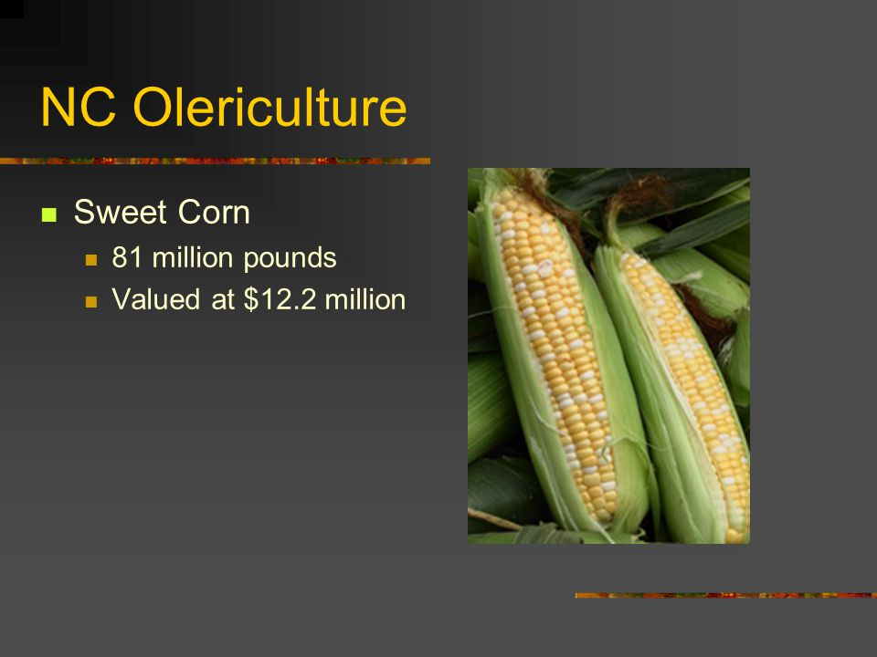 NC Olericulture Sweet Corn 81 million pounds Valued at $12.2 million