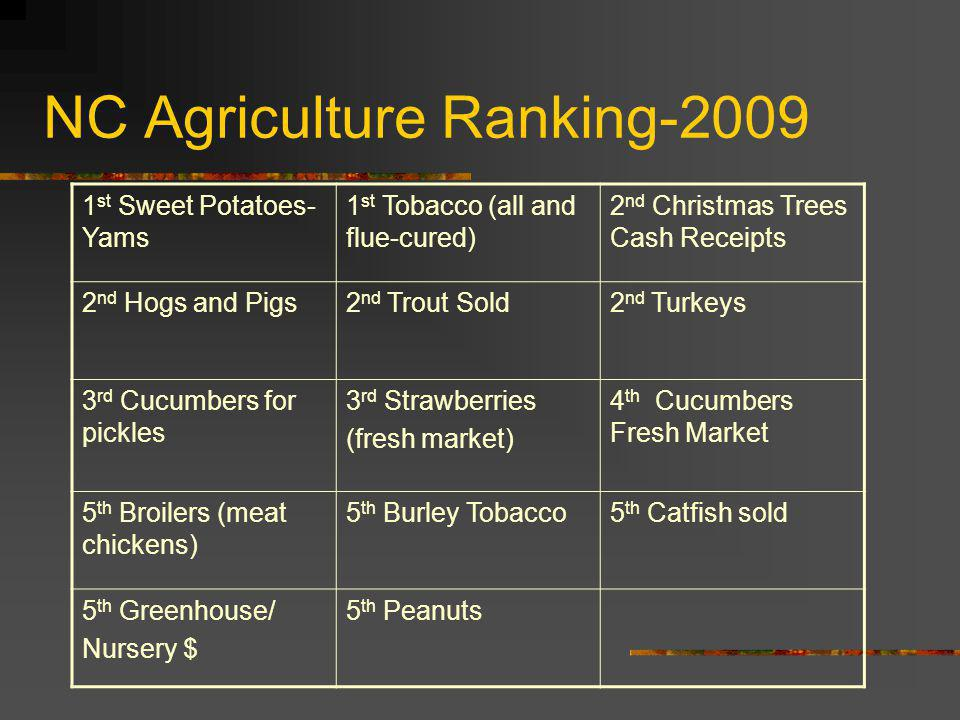 NC Agriculture Ranking-2009 1 st Sweet Potatoes- Yams 1 st Tobacco (all and flue-cured) 2 nd Christmas Trees Cash Receipts 2 nd Hogs and Pigs2 nd Trou