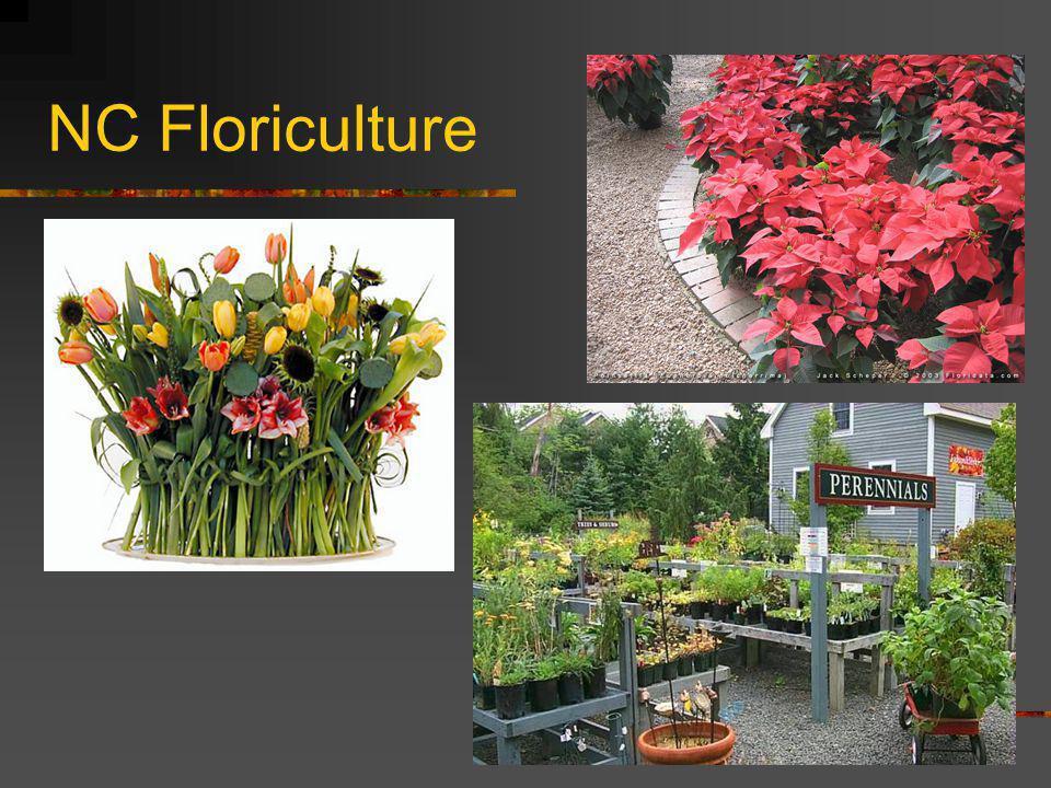 NC Floriculture