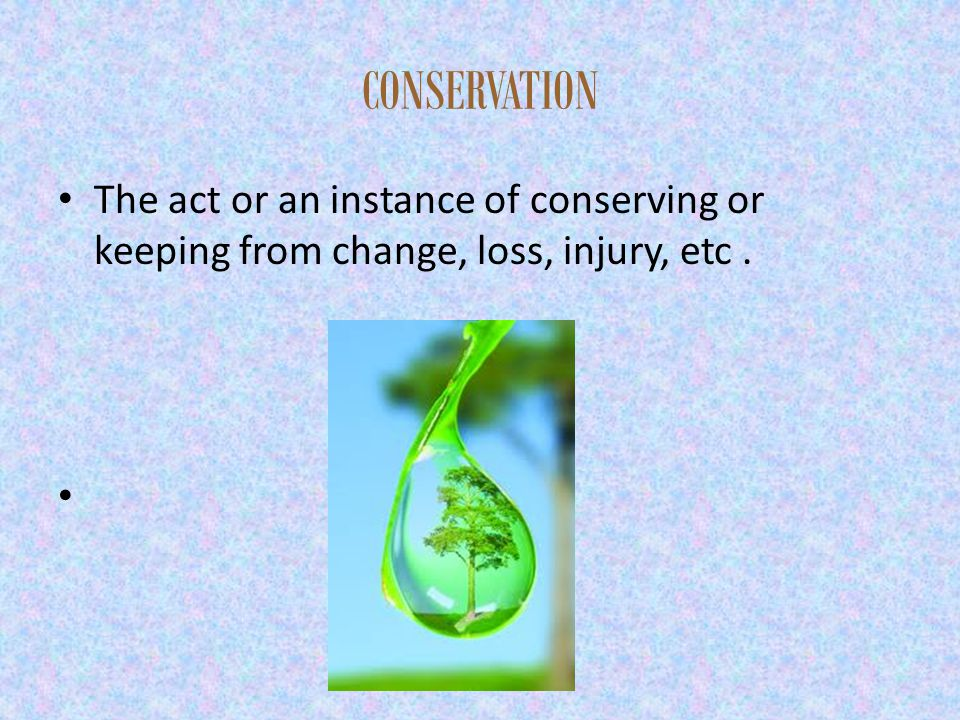 CONSERVATION The act or an instance of conserving or keeping from change, loss, injury, etc.