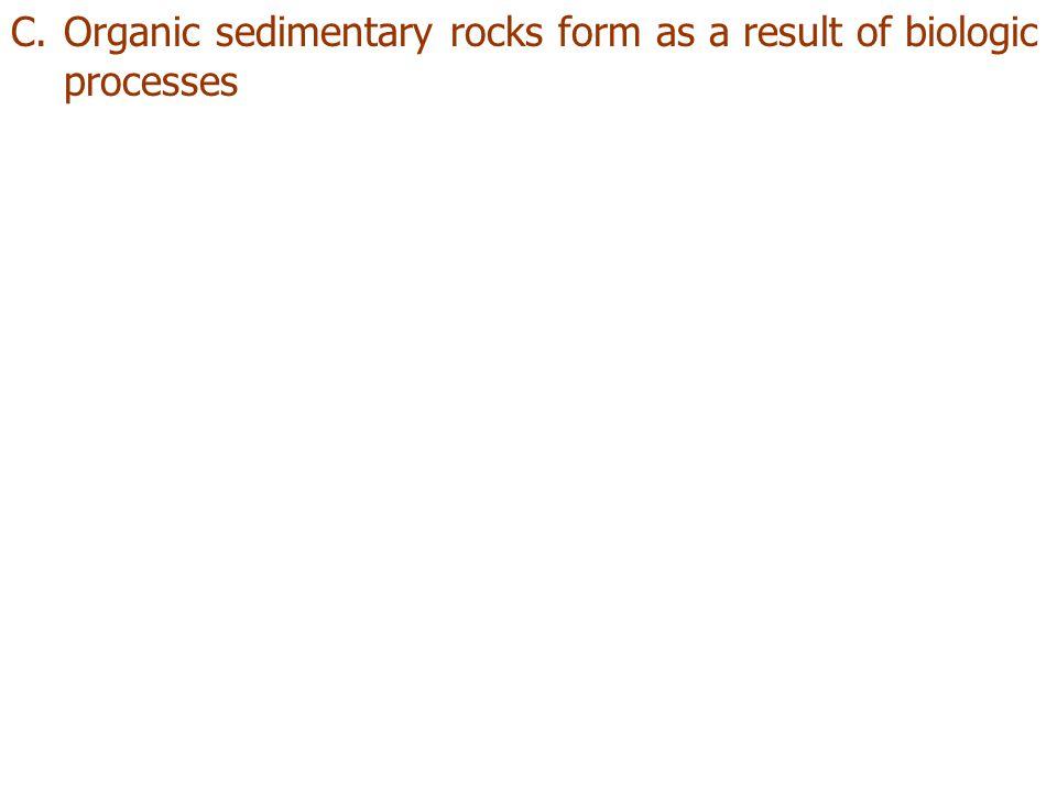 C.Organic sedimentary rocks form as a result of biologic processes