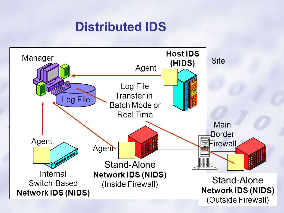 Distributed IDS Log File Manager Host IDS (HIDS) Main Border Firewall Agent Site Internal Switch-Based Network IDS (NIDS) Stand-Alone Network IDS (NID
