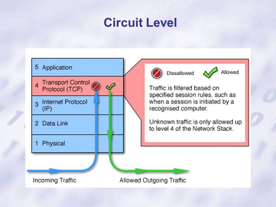Circuit Level