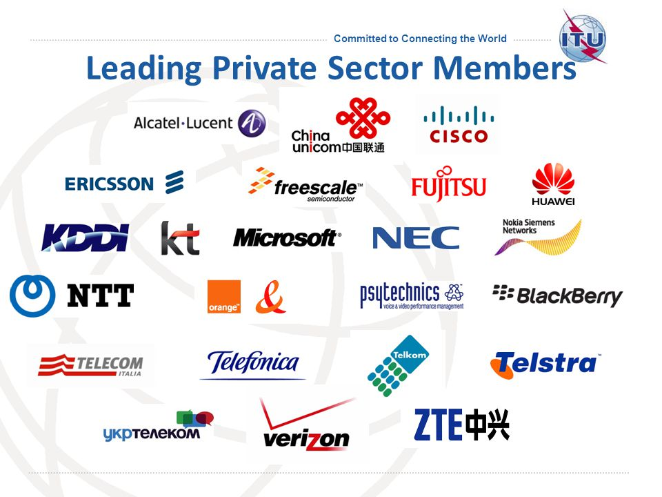 Committed to Connecting the World Leading Private Sector Members