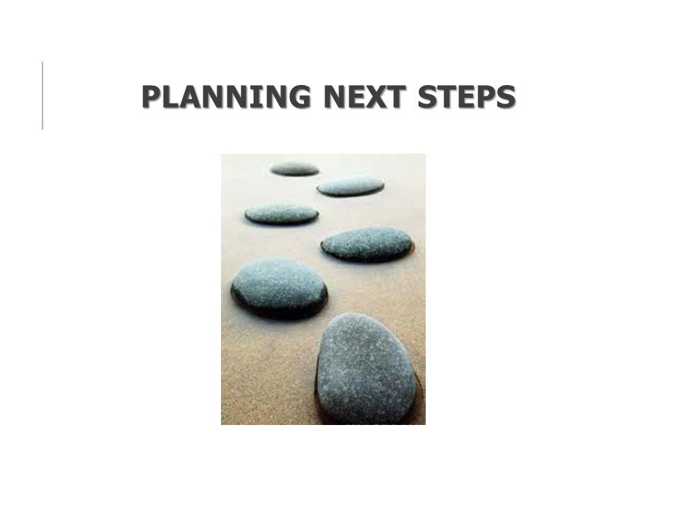 PLANNING NEXT STEPS