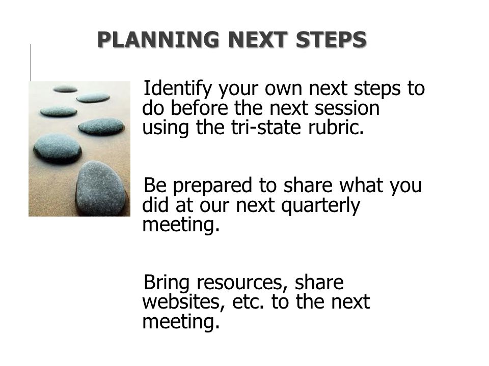 PLANNING NEXT STEPS Identify your own next steps to do before the next session using the tri-state rubric.