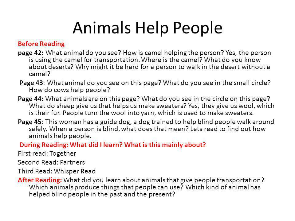 Animals Help People Before Reading page 42: What animal do you see.