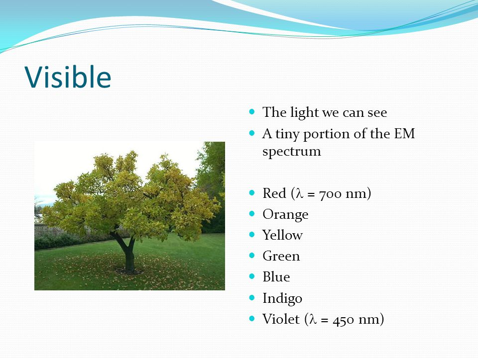 Visible The light we can see A tiny portion of the EM spectrum Red ( = 700 nm) Orange Yellow Green Blue Indigo Violet ( = 450 nm)