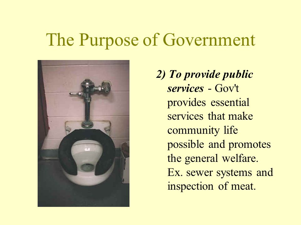 The Purpose of Government 2) To provide public services - Gov't provides essential services that make community life possible and promotes the general