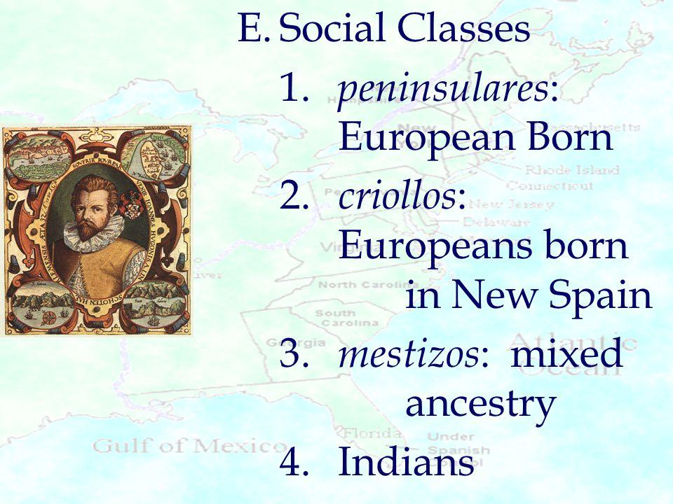 E.Social Classes 1. peninsulares : European Born 2. criollos : Europeans born in New Spain 3. mestizos : mixed ancestry 4.Indians