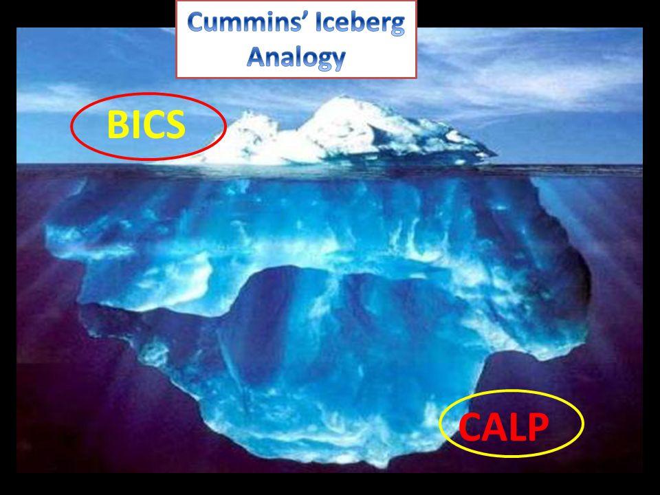 BICS CALP