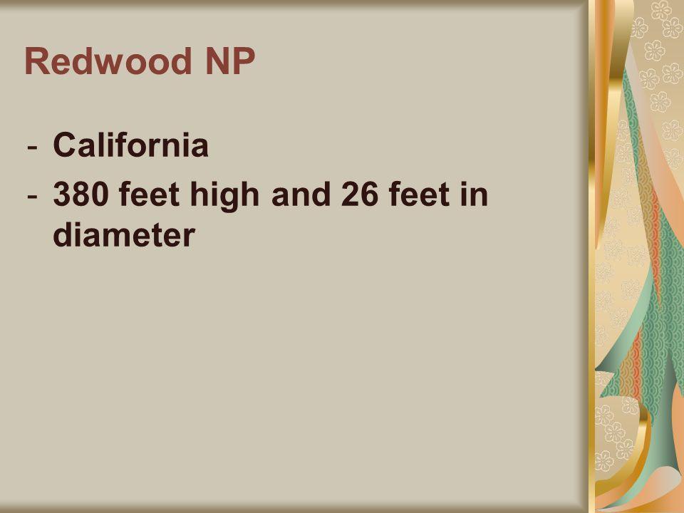 Redwood NP -California -380 feet high and 26 feet in diameter