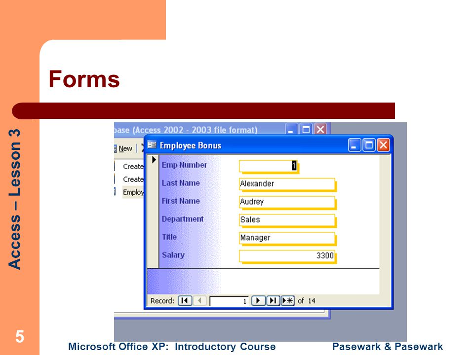 Access – Lesson 3 Microsoft Office XP: Introductory Course Pasewark & Pasewark 16 Textbox Properties Dialog box