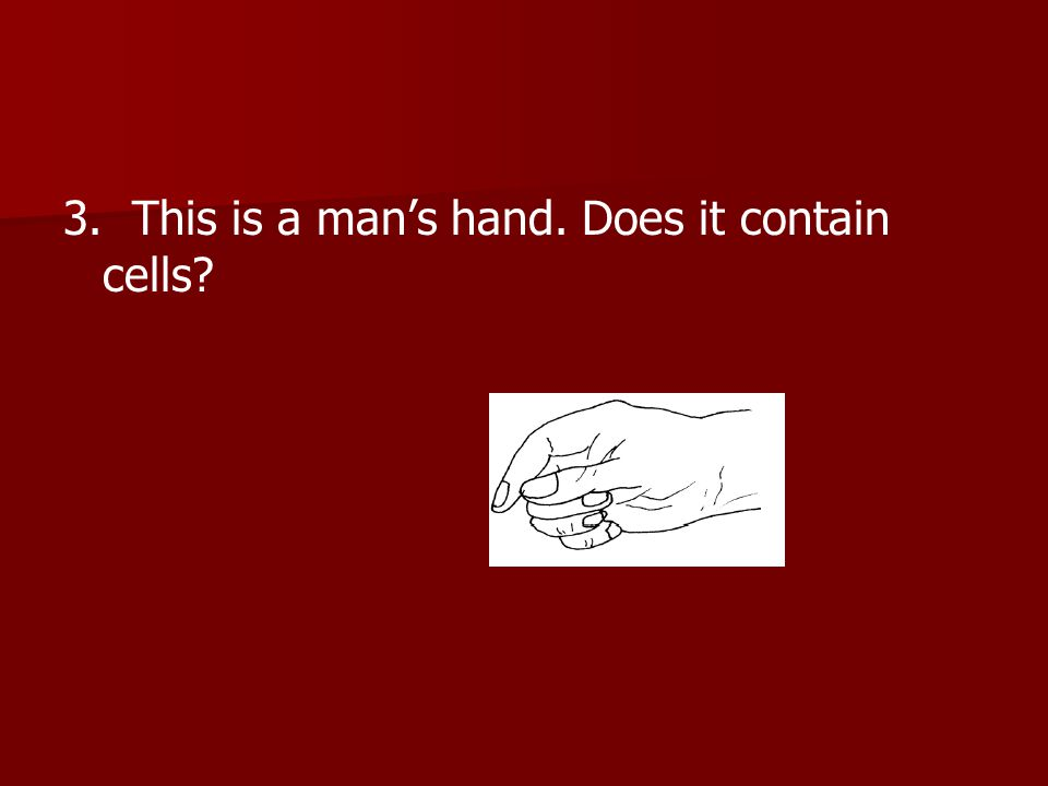 3. This is a man's hand. Does it contain cells?
