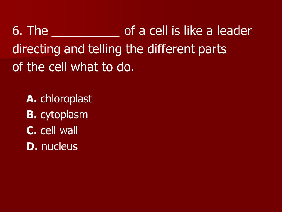 6. The __________ of a cell is like a leader directing and telling the different parts of the cell what to do. A. chloroplast B. cytoplasm C. cell wal