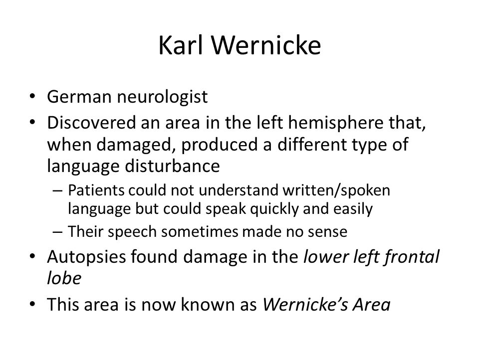 Karl Wernicke German neurologist Discovered an area in the left hemisphere that, when damaged, produced a different type of language disturbance – Patients could not understand written/spoken language but could speak quickly and easily – Their speech sometimes made no sense Autopsies found damage in the lower left frontal lobe This area is now known as Wernicke's Area