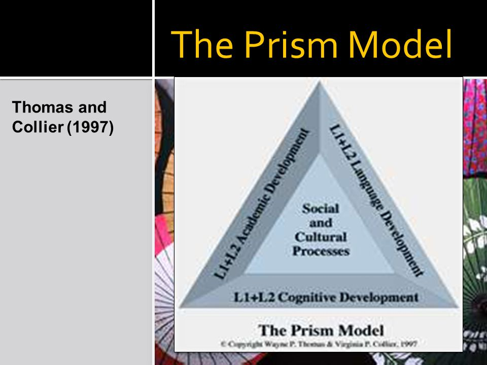 The Prism Model Thomas and Collier (1997)