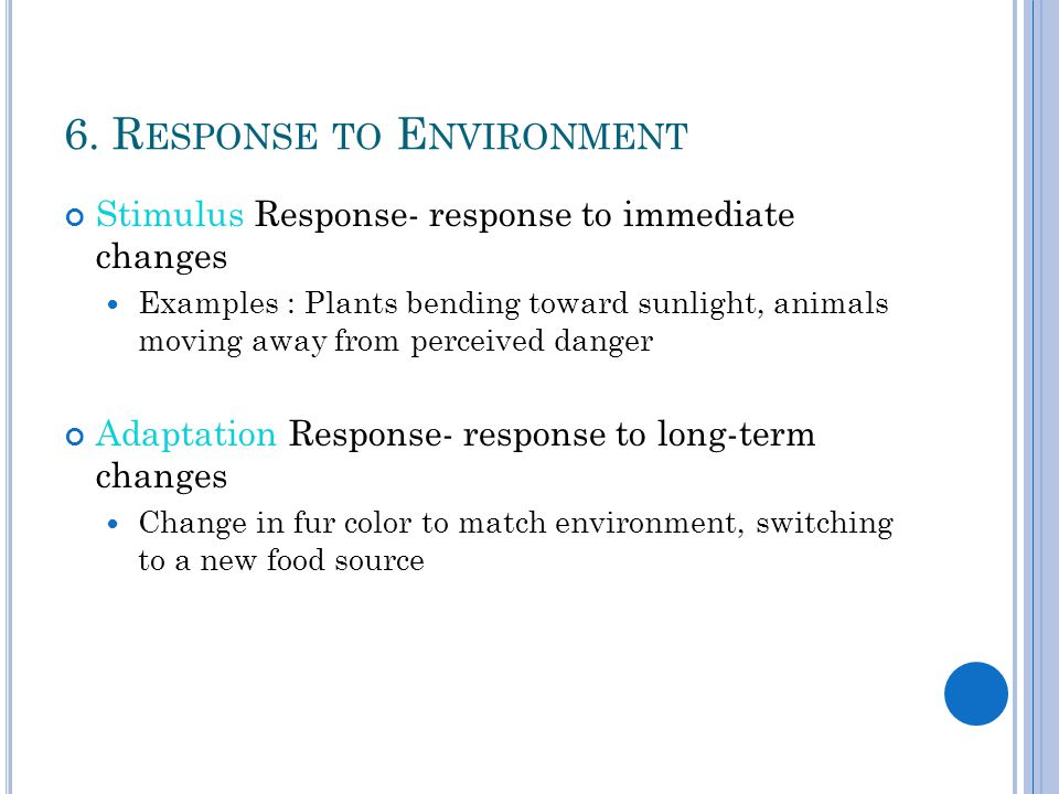 6. R ESPONSE TO E NVIRONMENT Stimulus Response- response to immediate changes Examples : Plants bending toward sunlight, animals moving away from perc
