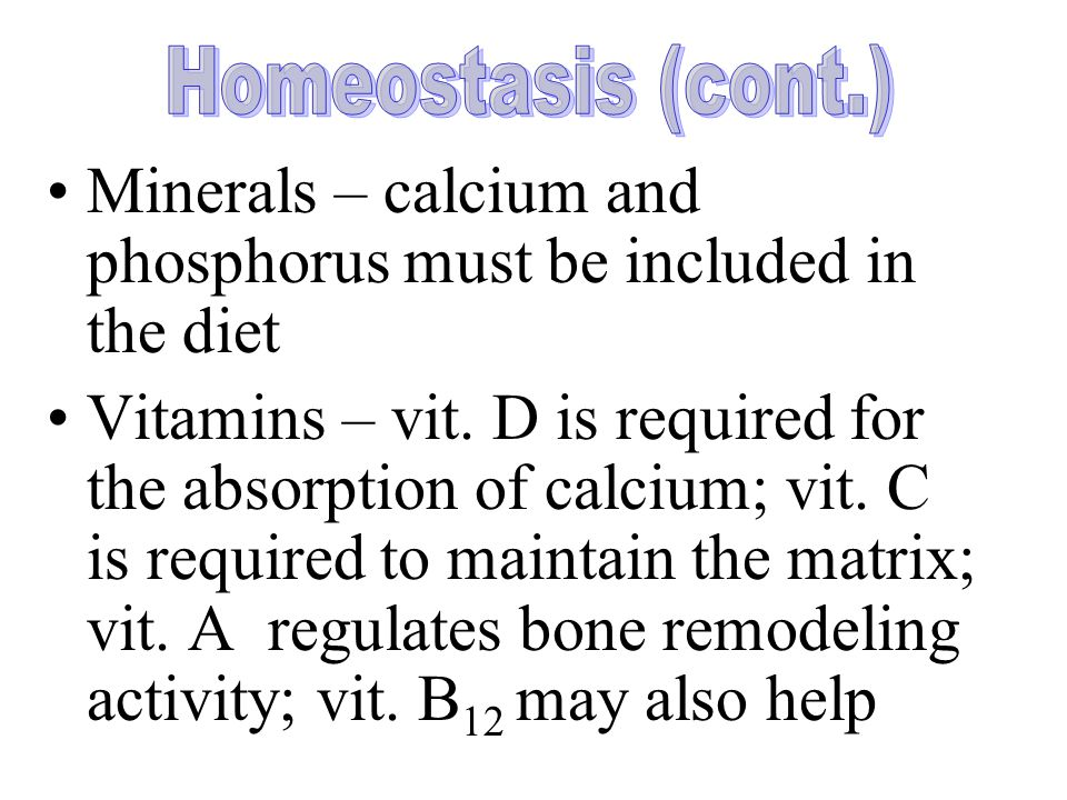 Minerals – calcium and phosphorus must be included in the diet Vitamins – vit.