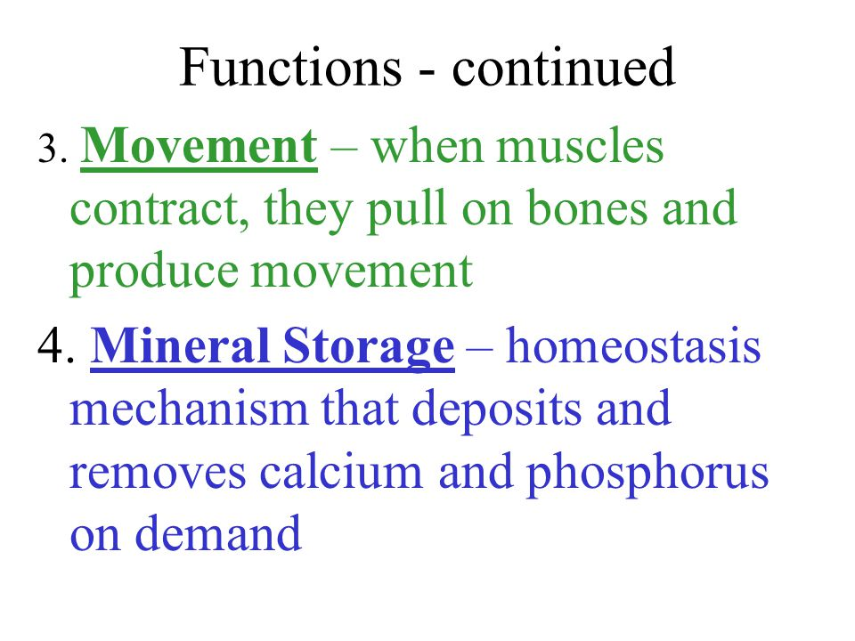 Functions - continued 3.