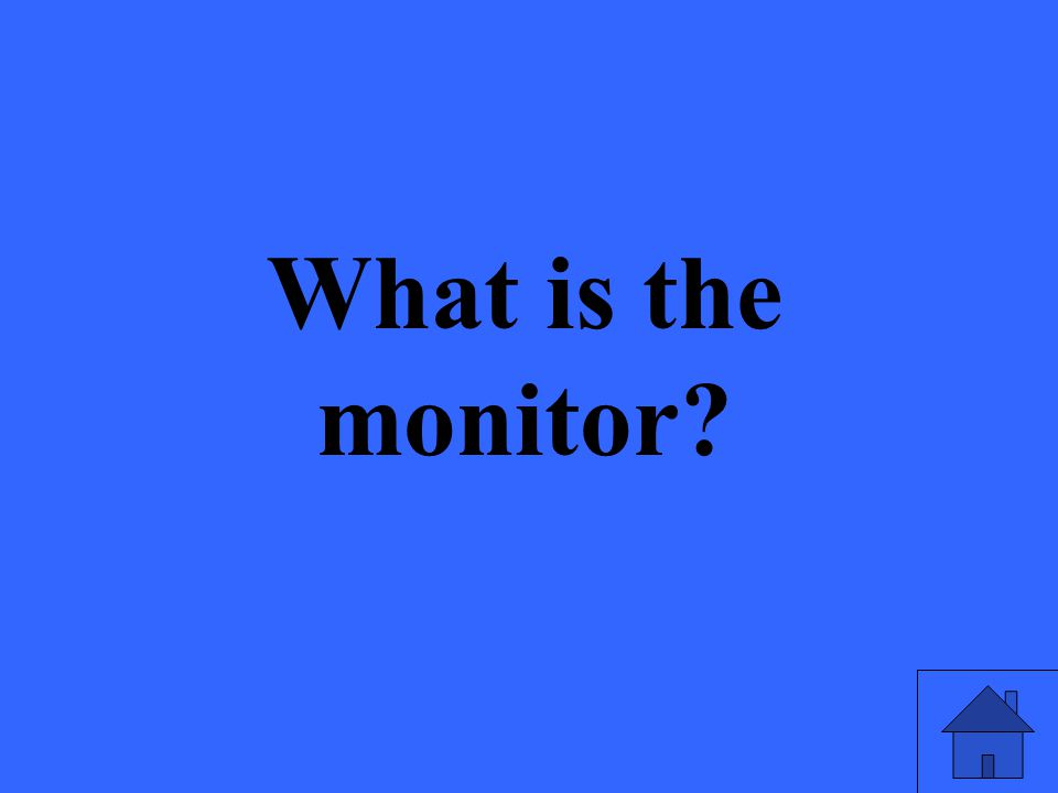 What is the monitor?