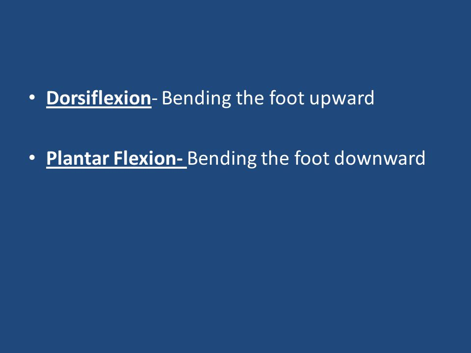 Dorsiflexion- Bending the foot upward Plantar Flexion- Bending the foot downward
