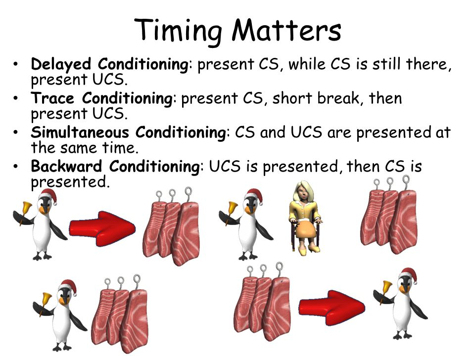 Timing Matters Delayed Conditioning: present CS, while CS is still there, present UCS. Trace Conditioning: present CS, short break, then present UCS.