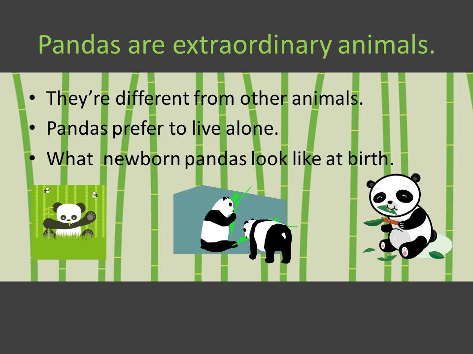 Pandas By: Elizabeth Kasprzak