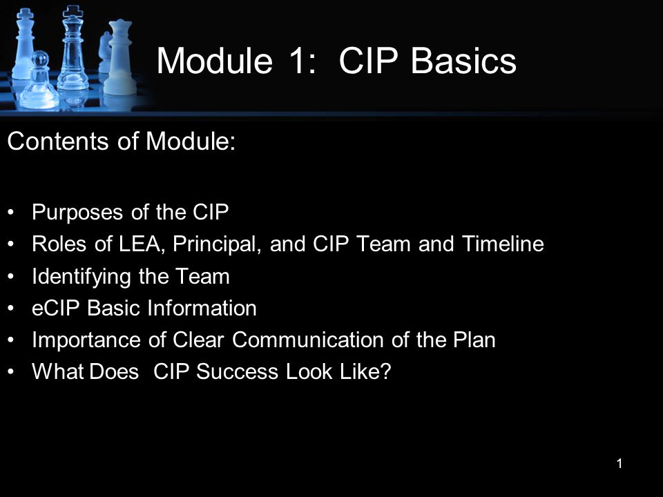 Module 1: CIP Basics Contents of Module: Purposes of the CIP Roles of LEA, Principal, and CIP Team and Timeline Identifying the Team eCIP Basic Inform