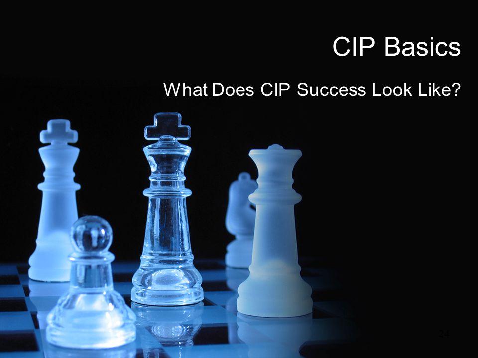 CIP Basics What Does CIP Success Look Like? 24