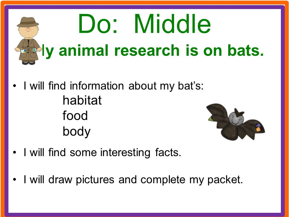 Do: Middle My animal research is on bats. I will find information about my bat's: habitat food body I will find some interesting facts. I will draw pi