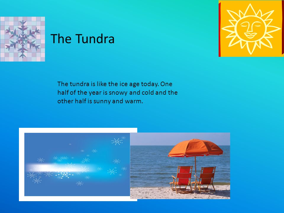 The Tundra The tundra is like the ice age today.