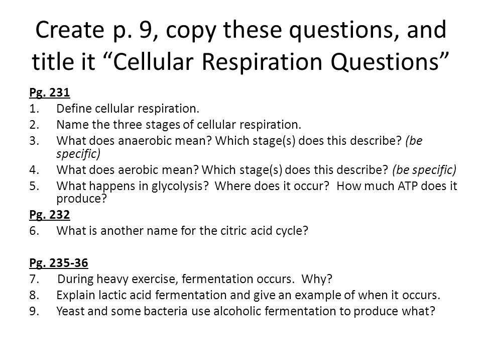 Create p.9, copy these questions, and title it Cellular Respiration Questions Pg.