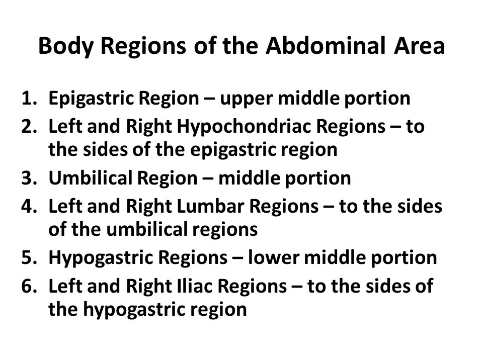 Body Regions of the Abdominal Area 1.Epigastric Region – upper middle portion 2.Left and Right Hypochondriac Regions – to the sides of the epigastric
