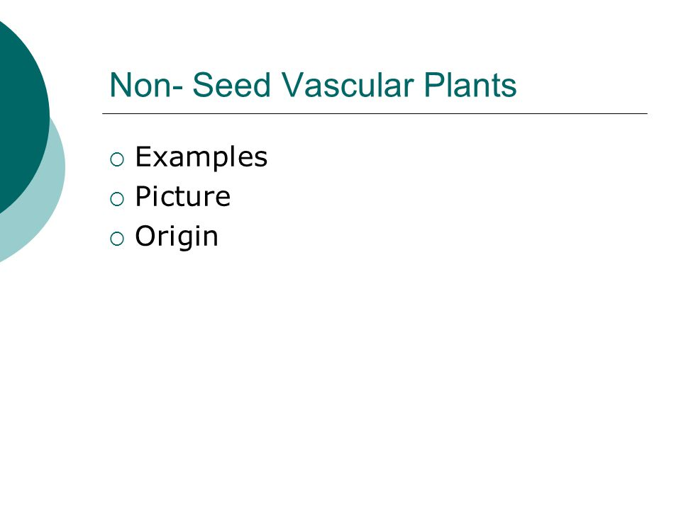 Difference between vascular and Nonvascular plants