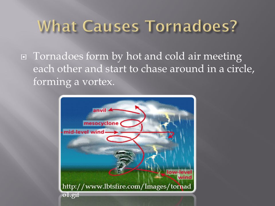  Tornadoes form by hot and cold air meeting each other and start to chase around in a circle, forming a vortex. http://www.lbtsfire.com/Images/tornad