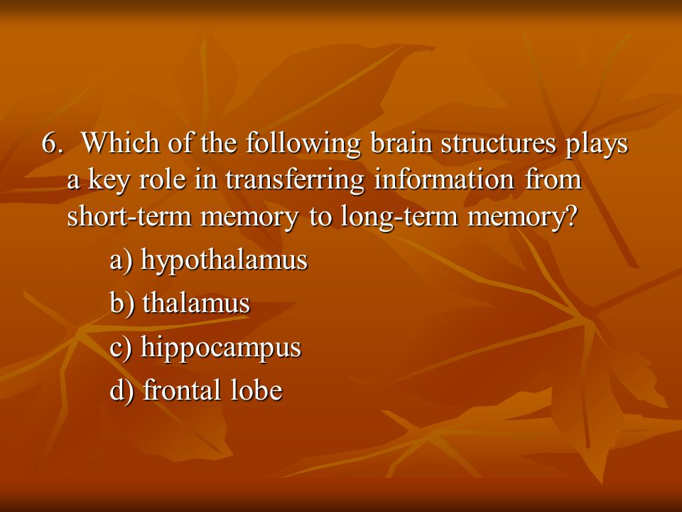 6. Which of the following brain structures plays a key role in transferring information from short-term memory to long-term memory? a) hypothalamus b)
