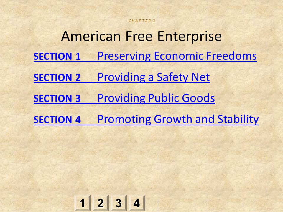 SECTION 1 Preserving Economic Freedoms SECTION 2 Providing a Safety Net SECTION 3 Providing Public Goods SECTION 4 Promoting Growth and Stability 2222 3333 4444 1111