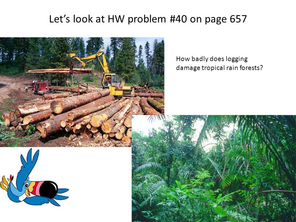 Let's look at HW problem #40 on page 657 How badly does logging damage tropical rain forests